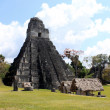 Tikal Ancient Maya Temples, Guatemala - Stock Photo