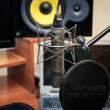 Tube microphone, professional microphone, recording studio — Stock Photo