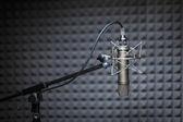 Tube microphone, professional microphone, recording studio — Stock Photo