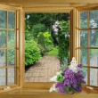 open window — Stock Photo
