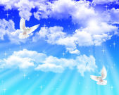 Pigeons in the sky — Stock Photo