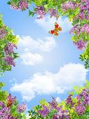 Flowers, sky and butterflies frame — Stock fotografie