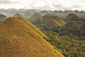 Panoramic view of the Chocolate Hills in Bohol, Philippines. — Stock Photo
