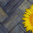 Yellow sunflower on old textured bamboo background — Stock Photo