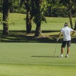 Male golfer on the green at the golf course — Stok fotoğraf