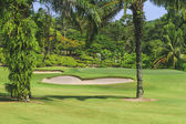 Golf course with bunker and green — Stock Photo