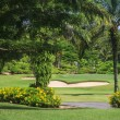 Stock Photo: Scenic golf course near Pattaythailand