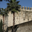 Alcazar of Jerez de la Frontera, Spain — Stock Photo