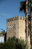 Alcazar of Jerez de la Frontera — Stock Photo