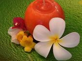 Frangipani Flower and Candle — Stock Photo