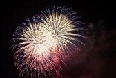 The Fireworks — Foto de Stock