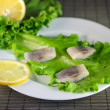 Herring filet — Foto Stock