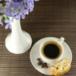Cup of coffee and biscotti — Stock Photo #25332799