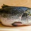 Stock Photo: Atlantic Salmon whole fish