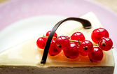 Cheesecake with redcurrant closeup — Stockfoto