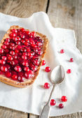 Tart with jellied fresh cranberries — Stockfoto