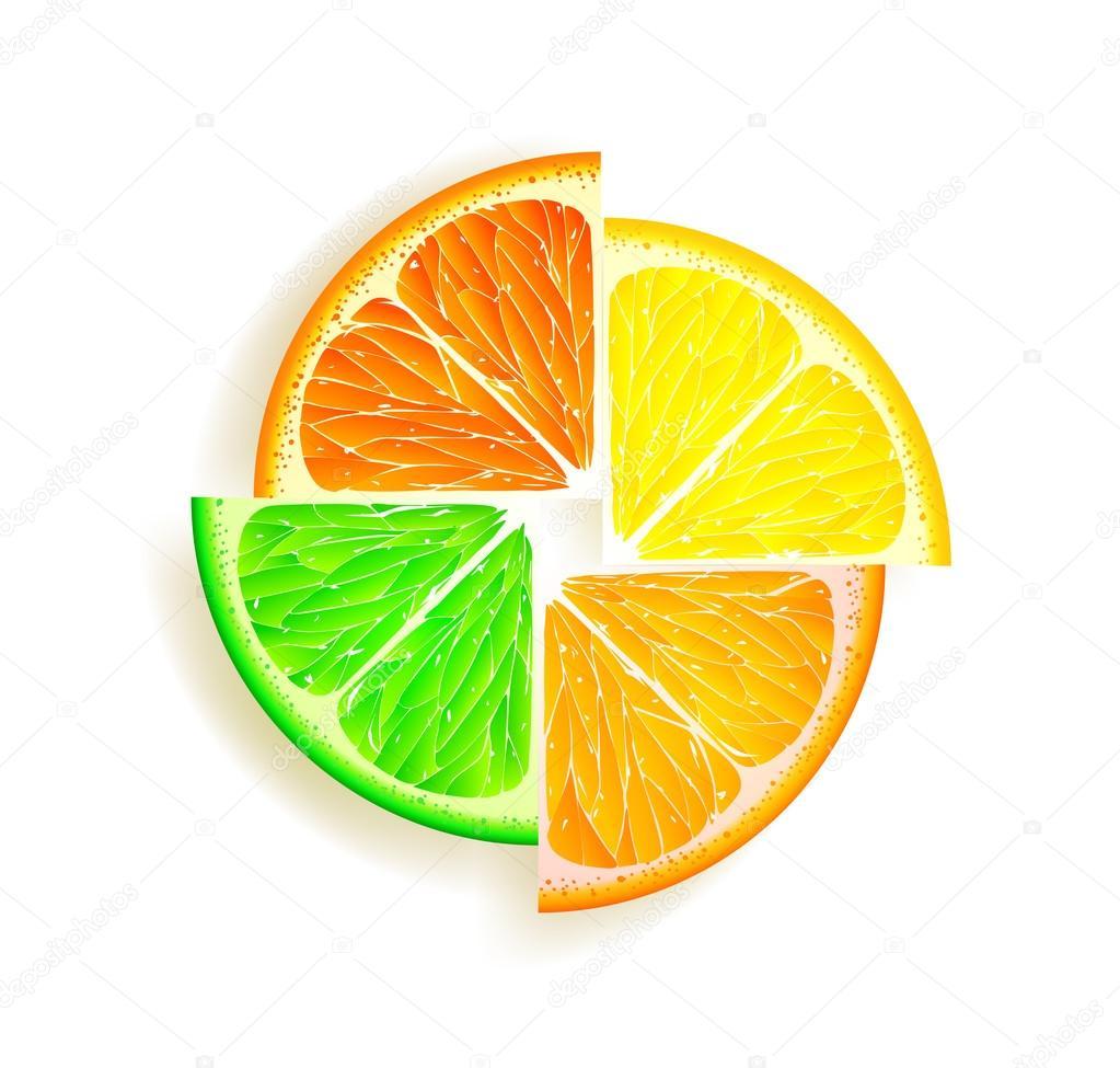 柠檬, 橙子, 石灰和葡萄柚 — 矢量图片作者 vantuz