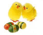 Two Easter Chicken communicating — Stock Photo