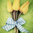 Stock Photo: Easter tulips
