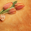Orange easter tulips — Stock Photo #23817855