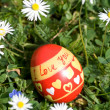 Red easter egg lying in springflower covered meadow — ストック写真