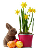 Yellow daffodils with easter bunny and easter eggs decoration — Stock Photo