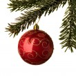 Red Christmas Bauble hanging from twig — Stock Photo #25482369