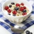 Muesli — Stock Photo #25497559