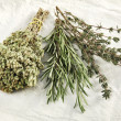Herbs — Stock Photo #25500241