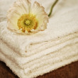 Beauty arrangement, towels with white flower — Stock Photo #25704945