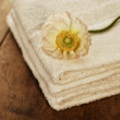 Beauty arrangement, towels with white flower  — Stock Photo