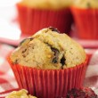 Delicious cranberry oatmeal muffins — Stock Photo