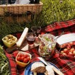 Picnic serie — Stock Photo #26006485