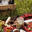 Picnic serie — Stock Photo #26007487