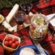Picnic serie — Stock Photo #26008119