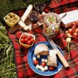 Picnic serie — Stock Photo #26008137