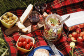 Picknick-serie — Stockfoto