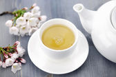 Cup of green tea and japanese cherry blossom — Stok fotoğraf
