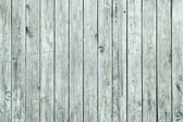 Mint Green Wooden Grunge Background — Stock Photo