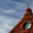Housetop with red ivy — Stock Photo
