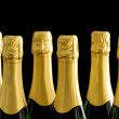 Champagne bottles on black backround — Stok fotoğraf