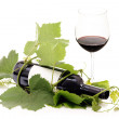 Foto Stock: Red wine bottle wrapped in grape vine and glass