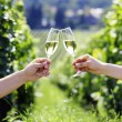 Toasting with two glasses of champagne in the vineyard — Stok fotoğraf
