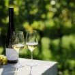 Two glasses of white wine (Riesling) and bottle in vineyard — Stock Photo
