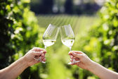 Toasting with two glasses of white wine in vineyard — Stock Photo