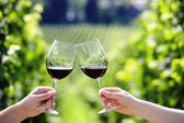 Brindando con dos vasos de vino tinto en el viñedo — Foto de Stock