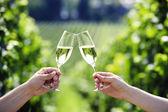 Opékání se dvěma sklenkami šampaňského na vinici — Stock fotografie