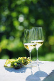 Two glasses of white wine in vineyard — Stock Photo