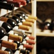 Wine bottles — Stockfoto #28243075