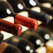 Wine bottles — Stockfoto #28243519